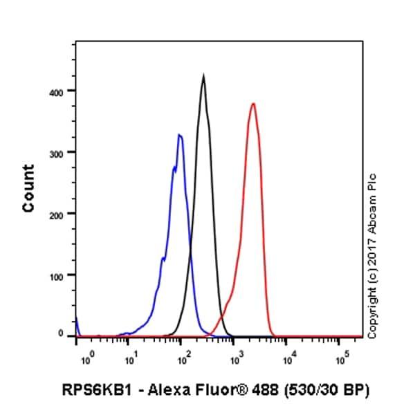 Flow Cytometry - Anti-S6K1 antibody [E343] (ab32529)
