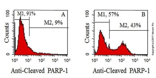 Flow Cytometry - Anti-Cleaved PARP1 antibody [Y34] (ab32561)