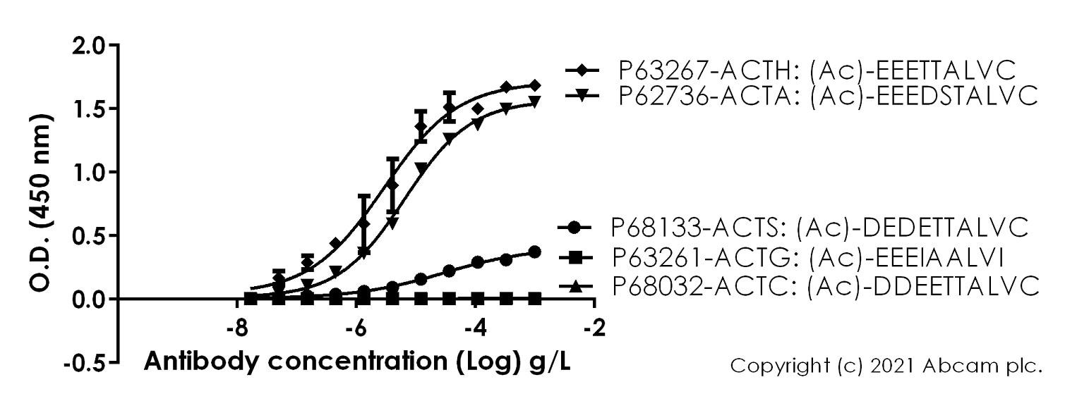 ELISA - Anti-alpha smooth muscle Actin (acetyl E3) + ACTG2 (acetyl E3) antibody [E184] (ab32575)