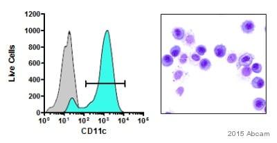 Flow Cytometry - Anti-CD11c antibody [N418] (ab33483)