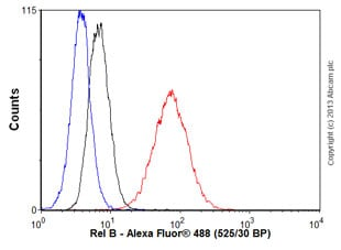 Flow Cytometry - Anti-Rel B antibody [EP614Y] (ab33907)
