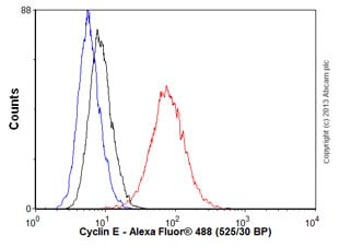 Flow Cytometry - Anti-Cyclin E1 antibody [EP435E] (ab33911)
