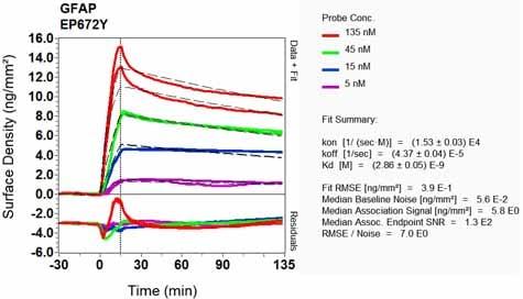 Other - Anti-GFAP antibody [EP672Y] (ab33922)