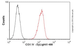 Flow Cytometry -抗Cox IV抗体[MabCAM3988]——线粒体标记(AB33 985)