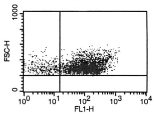Flow Cytometry - Anti-LYVE1 antibody (ab36993)