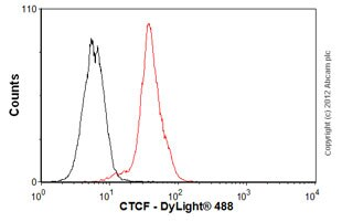 Flow Cytometry - Anti-CTCF antibody [mAbcam 37477] (ab37477)