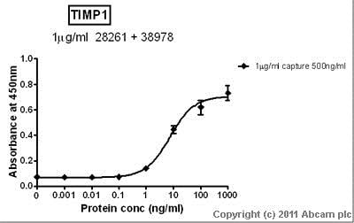 Sandwich ELISA - Anti-TIMP1 antibody - Carboxyterminal end (ab38978)
