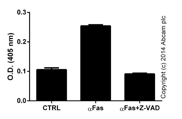Functional assays: Caspase 8 Assay Kit (Colorimetric) (ab39700)