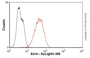 Flow Cytometry - Anti-Ezrin antibody [3C12] (ab4069)