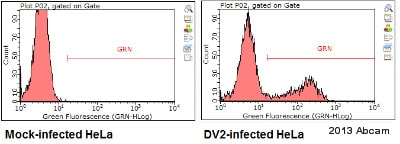 Flow Cytometry - Anti-Dengue Virus NS1 glycoprotein antibody [DN2] (ab41623)