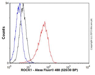 Flow Cytometry - Anti-ROCK2 + ROCK1 antibody [EP786Y] (ab45171)
