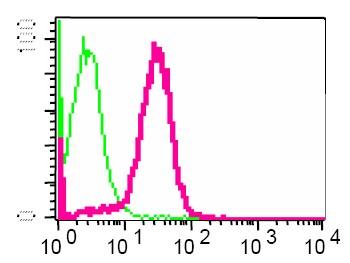 Flow Cytometry - Anti-Interferon alpha/beta receptor 1 antibody [EP899Y] (ab45172)