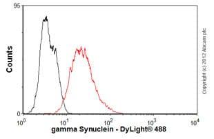Flow Cytometry - Anti-gamma Synuclein antibody [1H10D2] (ab47966)