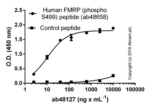 ELISA - Anti-FMRP (phospho S499) antibody (ab48127)