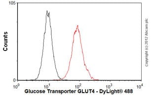 Flow Cytometry - Anti-Glucose Transporter GLUT4 antibody [mAbcam48547] (ab48547)