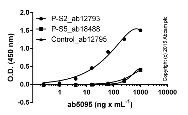 ELISA - Anti-RNA polymerase II CTD repeat YSPTSPS (phospho S2) antibody - ChIP Grade (ab5095)