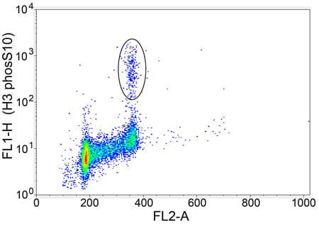 Flow Cytometry - Anti-Histone H3 (phospho S10) antibody - ChIP Grade (ab5176)