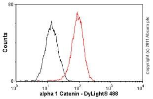 Flow Cytometry - Anti-CTNNA1 antibody [EP1793Y] (ab51032)
