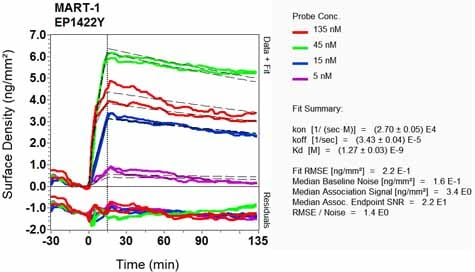 OI-RD Scanning - Anti-MelanA antibody [EP1422Y] (ab51061)