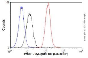 Flow Cytometry - Anti-WSTF antibody [EP1704Y] (ab51256)