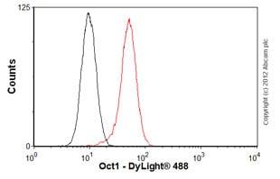 Flow Cytometry - Anti-Oct-1 antibody [POU5I097] (ab51363)