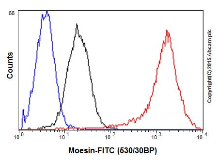 Flow Cytometry - Anti-Moesin antibody [EP1863Y] (ab52490)