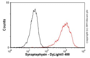 Flow Cytometry - Anti-Synaptophysin antibody [EP1098Y] (ab52636)