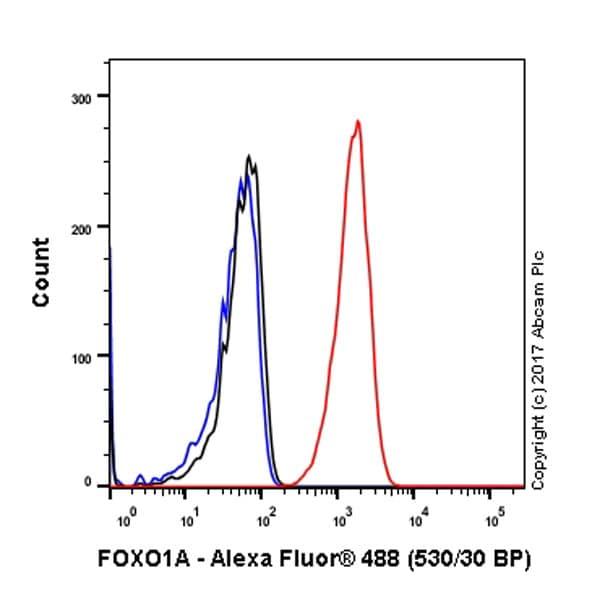 Flow Cytometry - Anti-FOXO1A antibody [EP927Y] (ab52857)