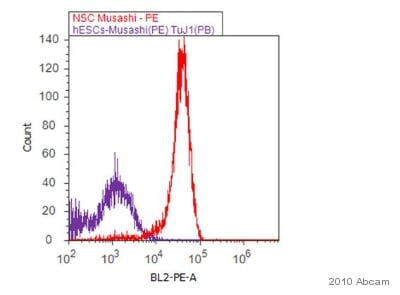 Flow Cytometry - Anti-Musashi 1 / Msi1 antibody [EP1302] (ab52865)