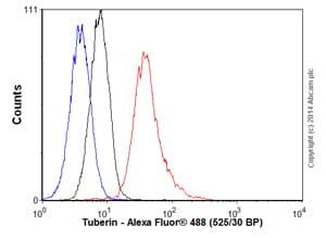 Flow Cytometry - Anti-Tuberin antibody [EP1107Y] (ab52936)
