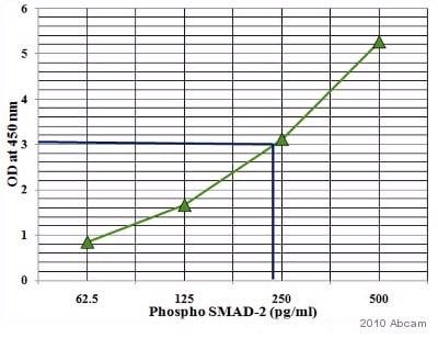 ELISA - Anti-Smad2 (phospho S467) antibody (ab53100)