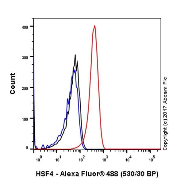 Flow Cytometry - Anti-HSF4 antibody [EP1719Y] (ab53291)