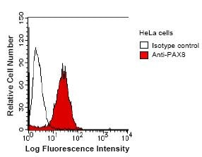 Flow Cytometry - Anti-PAX8 antibody [PAX8R1] (ab53490)
