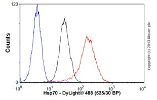 Flow Cytometry - Anti-Hsp70 antibody [BB70] (ab53496)