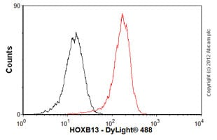 Flow Cytometry - Anti-HOXB13 antibody [mAbcam53931] (ab53931)