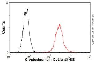 Flow Cytometry - Anti-Cryptochrome I/CRY1 antibody (ab54649)