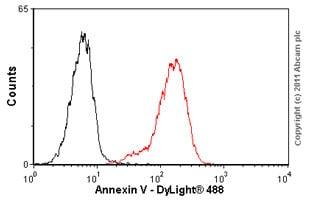 Flow Cytometry - Anti-Annexin V/ANXA5 antibody (ab54775)