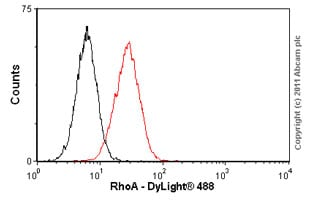 Flow Cytometry - Anti-RhoA antibody [1B12] (ab54835)