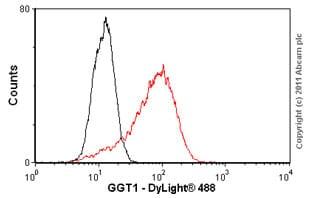 Flow Cytometry - Anti-GGT1/GGT antibody (ab55138)