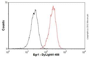 Flow Cytometry - Anti-Egr1 antibody [mAbcam55160] (ab55160)