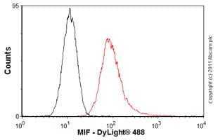 Flow Cytometry - Anti-MIF antibody (ab55445)