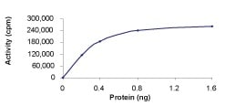 Functional Studies - Recombinant human Raf1 (mutated Y341E + Y341E) protein (ab55721)
