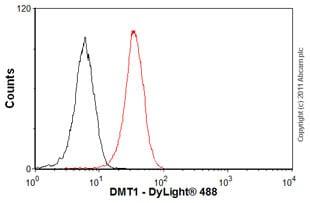 Flow Cytometry - Anti-DMT1 antibody [4C6] (ab55735)
