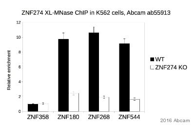 ChIP on chip - Anti-ZNF274 antibody (ab55913)