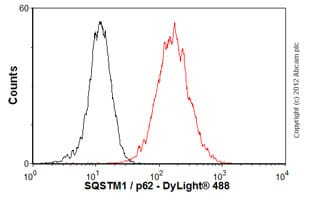 Flow Cytometry - Anti-SQSTM1 / p62 antibody (ab56416)