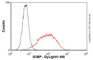 Flow Cytometry - Anti-G3BP antibody (ab56574)