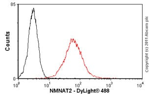 Flow Cytometry - Anti-NMNAT2 antibody (ab56980)