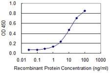 夹心ELISA-抗TDP43抗体[2E2-D3](ab57105)