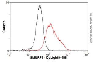 Flow Cytometry - Anti-SMURF1 antibody (ab57573)