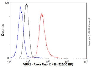 Flow Cytometry - Anti-VRK2 antibody (ab58052)